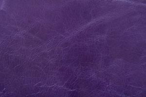 Rocky Royal Purple
