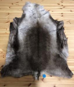 Reindeer Hide 109