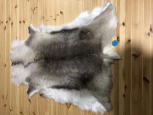 Reindeer Hide 114
