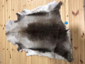 Reindeer Hide 120