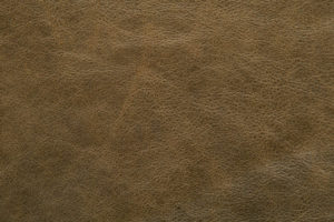 Charger Upholstery Leather Moss