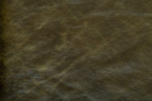 Charger Upholstery Leather Olive