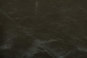 Dynasty Upholstery Leather Pine