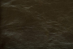 Dynasty Upholstery Leather Sage
