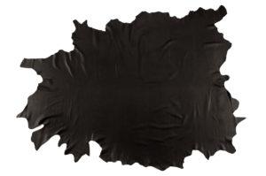 Airedale tamigi whole hide black