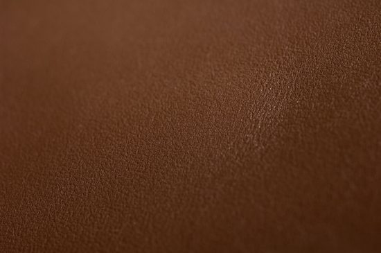 Galaxy Leather Hide Closeup