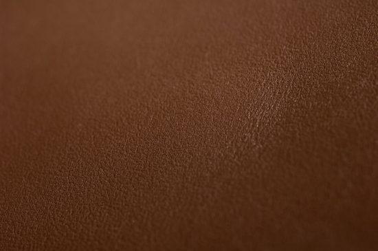 Galaxy Leather Hide Closeup