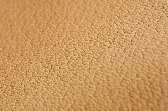 Lining Leather Hide Closeup