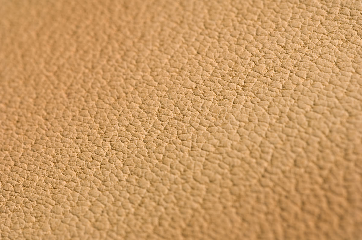 Pig Skin Lining Leather Hide close Up
