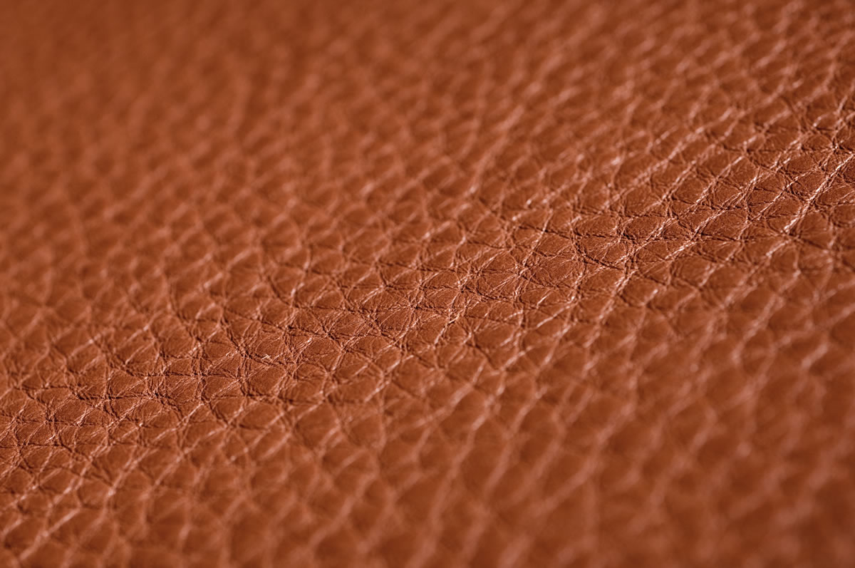 Airedale Tan Tamigi Leather Close Up